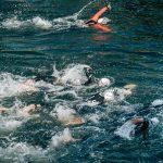 Les sports de synchronisation : Le plongeon et la nage